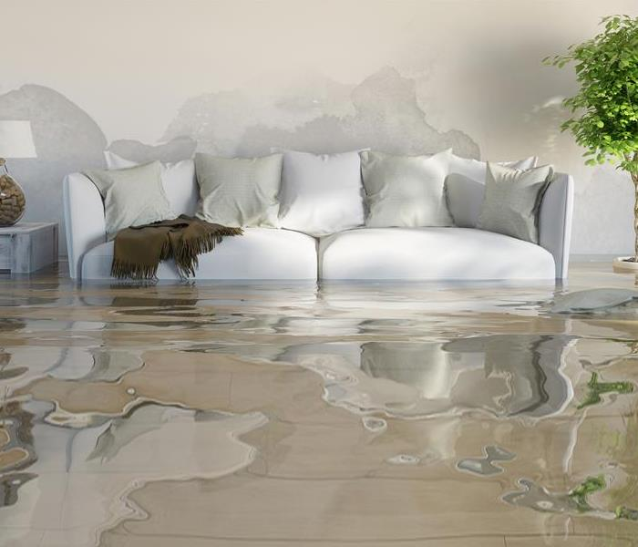 Water Damage 5 Things You Need to Know About Water Damage by SERVPRO of Chemung & Schuyler Counties