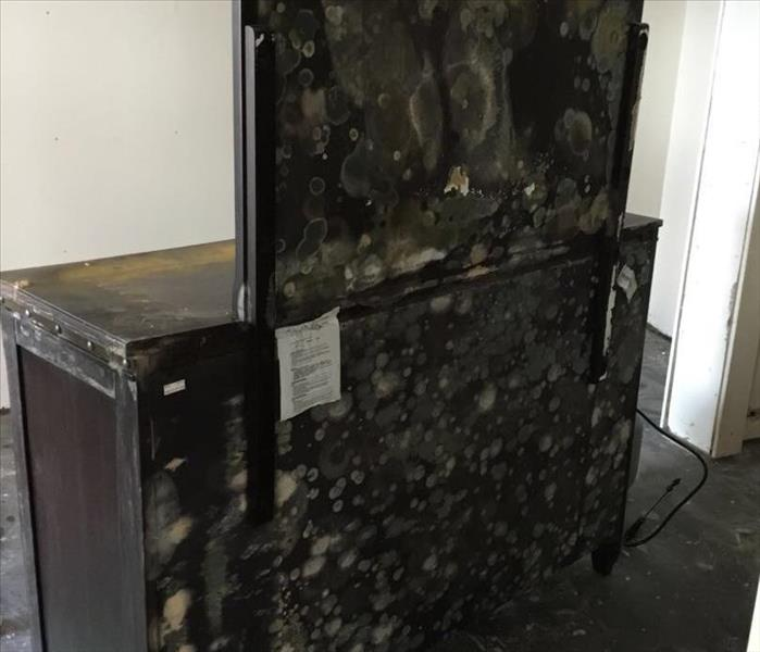 Why SERVPRO Belongings Damaged because of Mold by SERVPRO of Chemung & Schuyler Counties