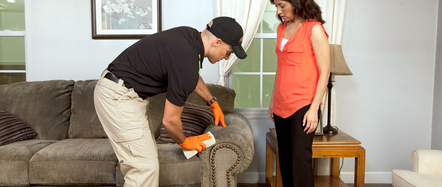 Horseheads, NY carpet upholstery cleaning