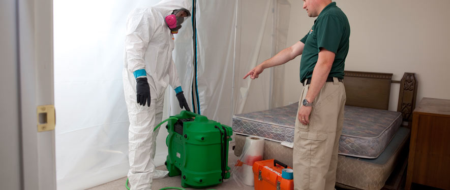 Elmira, NY mold removal process